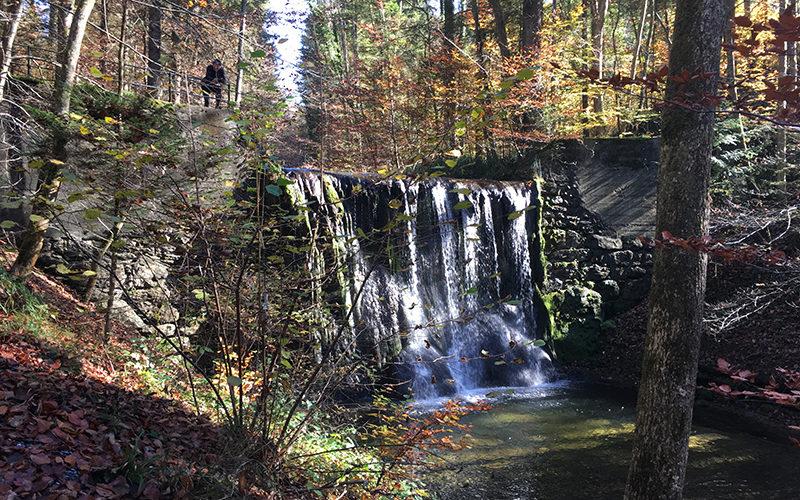RockTheBike Route Küsnachtertobel