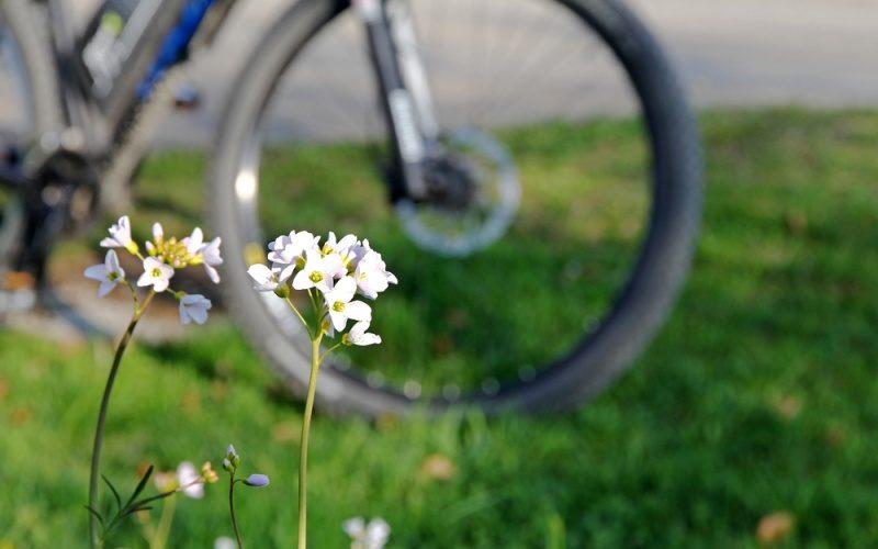 Übungstour im Frühling