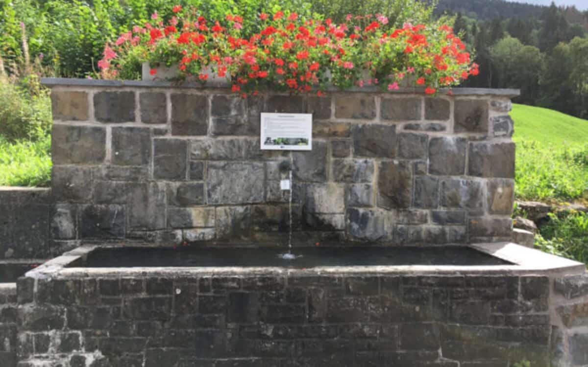 Brunnen Rietbad